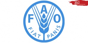 Joint Scholarship of Hungarian Government and the United Nations Food and Agriculture Organization (FAO)